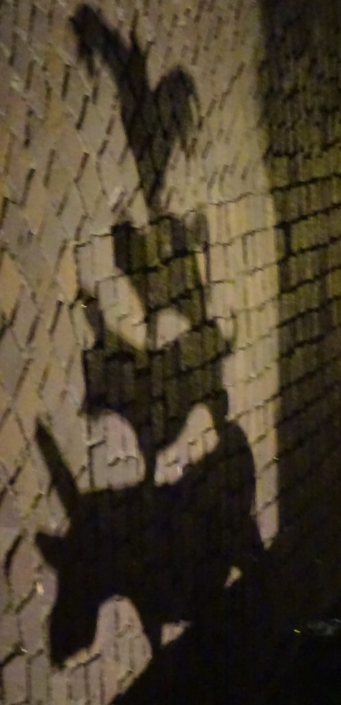 The Shadow Of The Bremen Town Musicians Statue On A Brick Wall