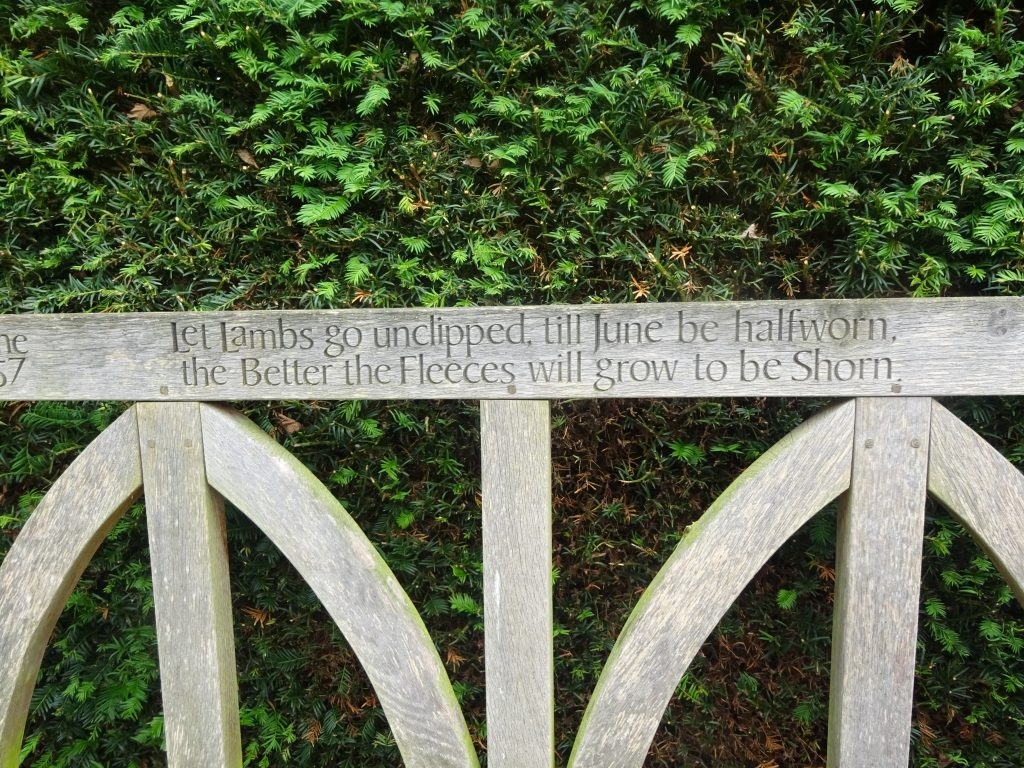 One Of The Benches With Quotes