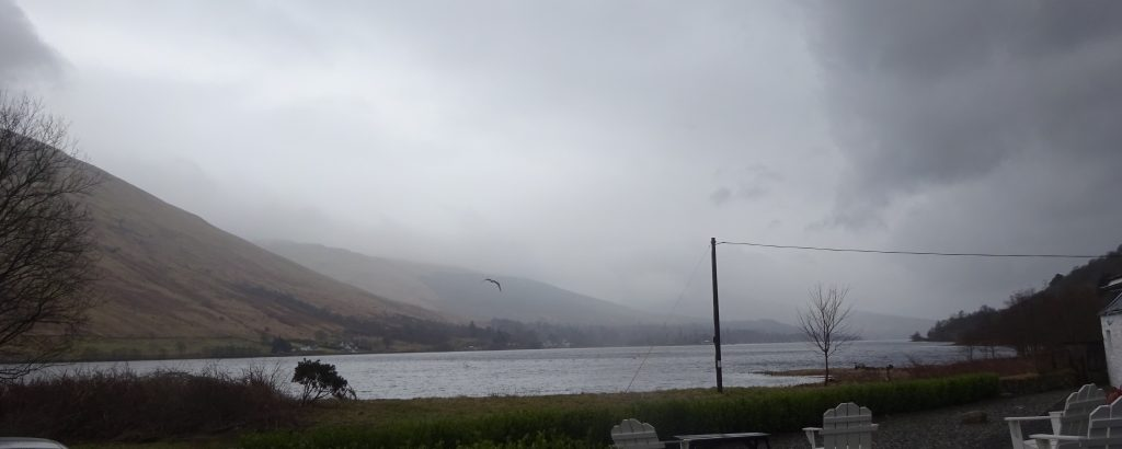 View Of Loch Fyne
