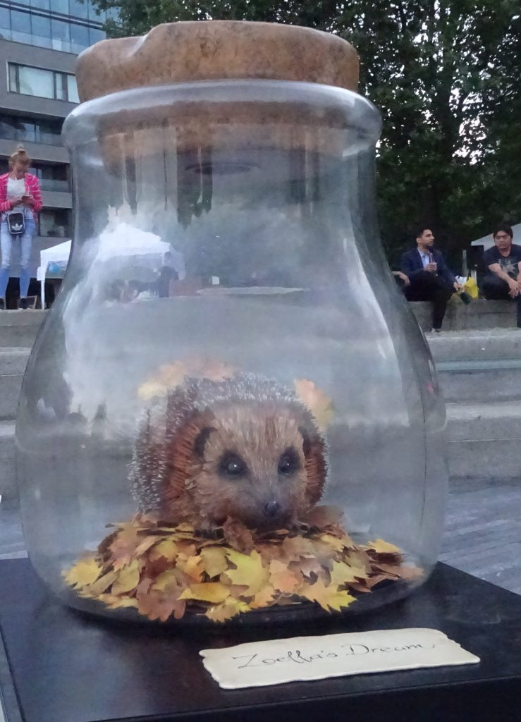 'For The Love Of The Hedgehog' Dream Jar