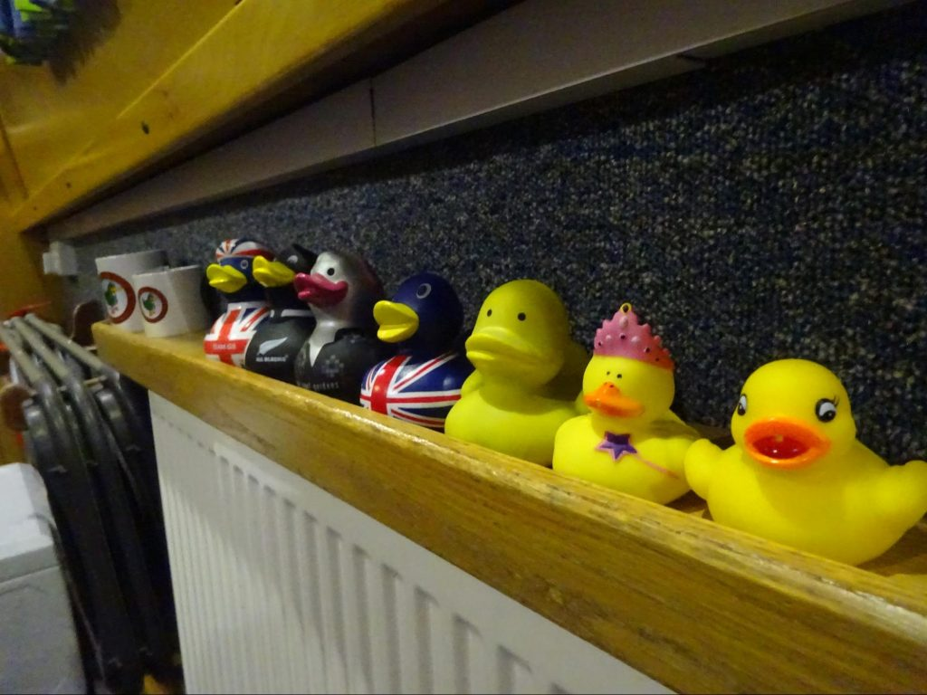 A Collection of Wandering Ducks