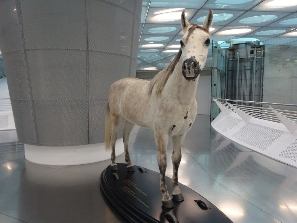 Horse At Mercedes-Benz Museum
