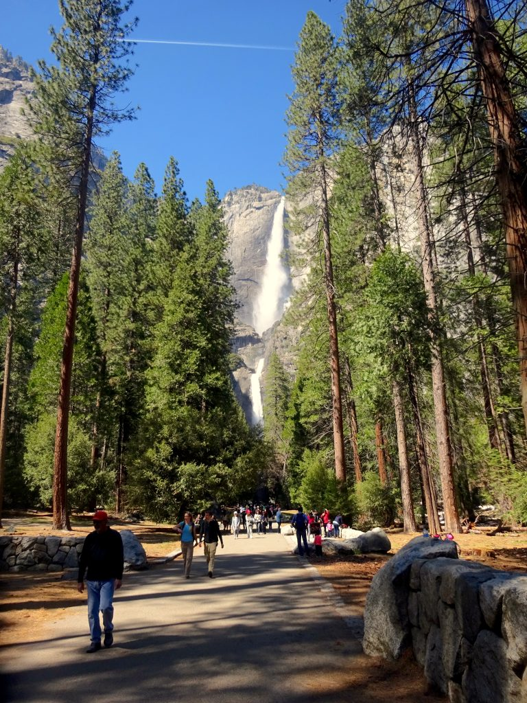 First View Of Yosemite Falls