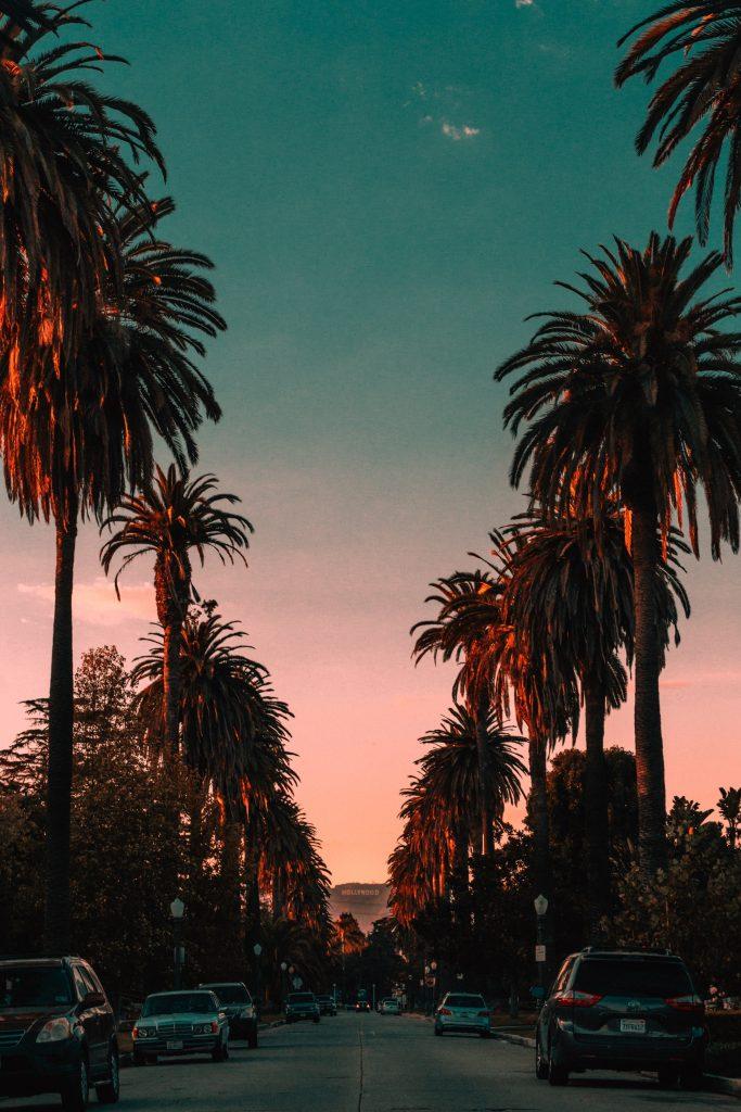 Californian Sunshine