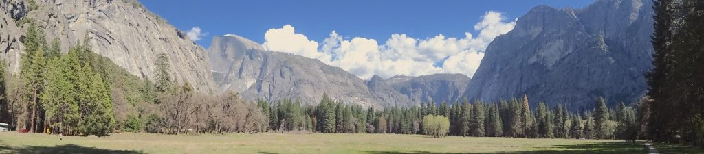 The Meadow In Yosemite
