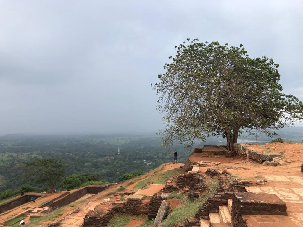 Places To Visit In Sri Lanka Sigiriya