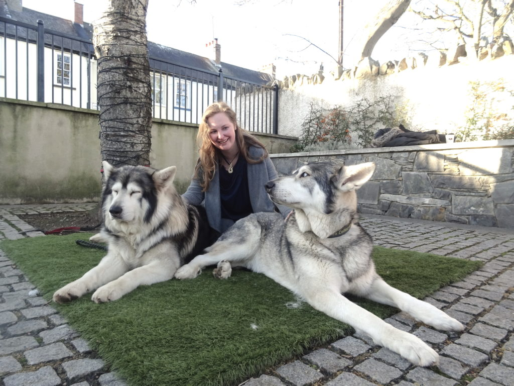 Meeting Summer And Greywind Game Of Thrones Tour
