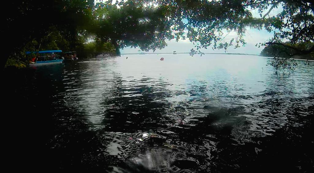 Black Cenote