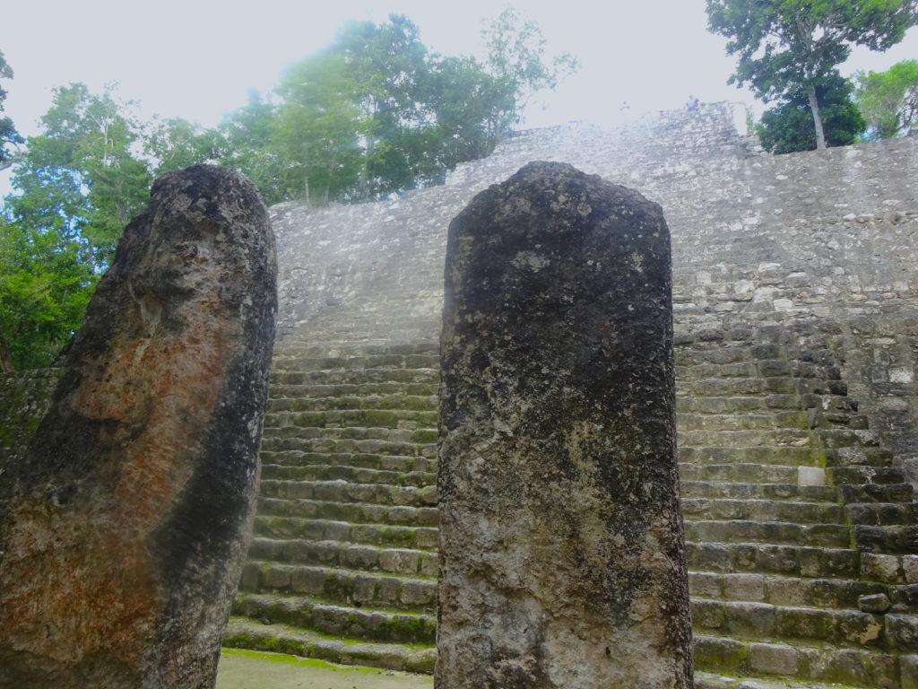 Stelea Structure VII