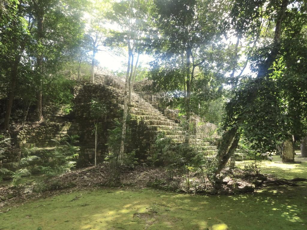 Structure VII Calakmul