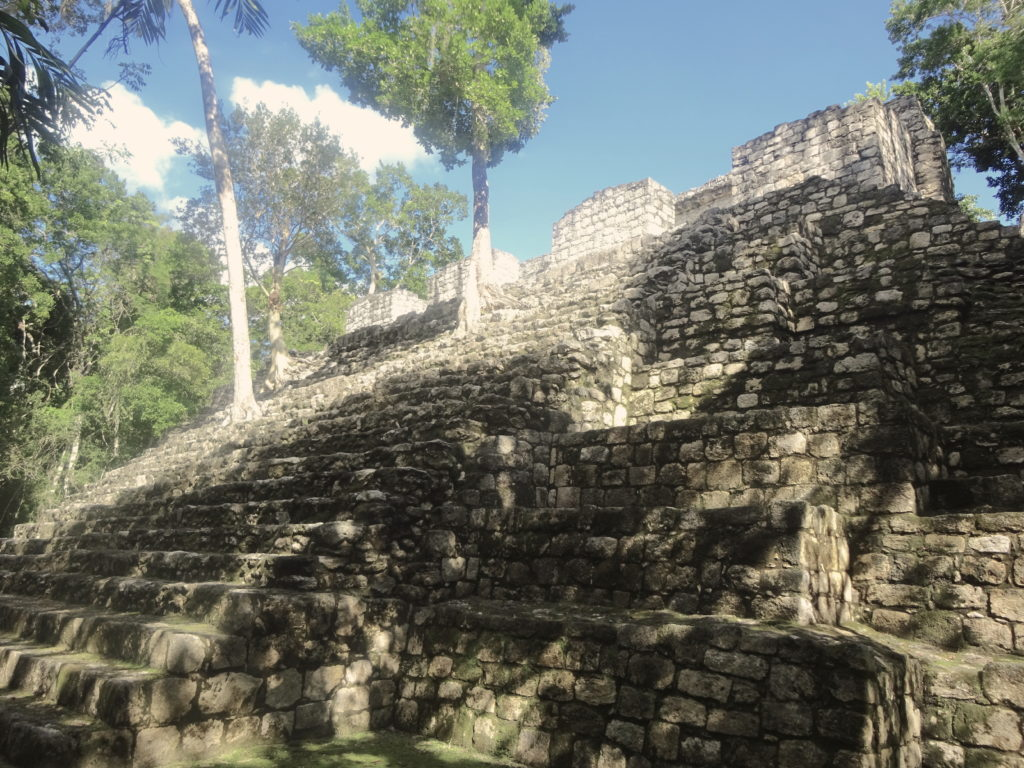 Structure XV Calakmul