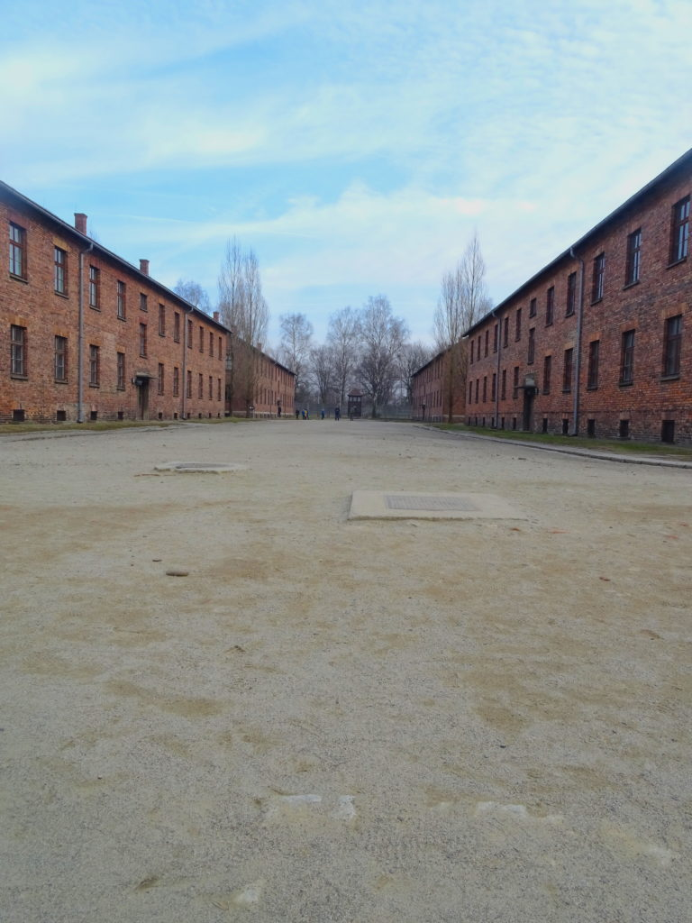 Blocks At Auschwitz