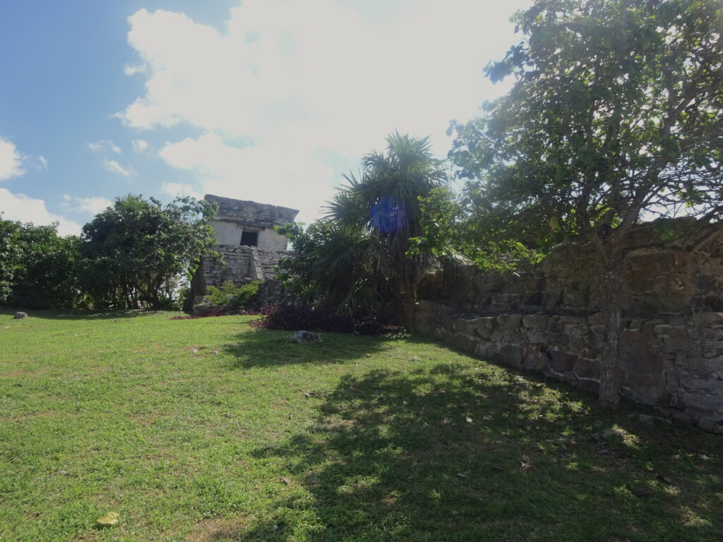 Ruins And Tress