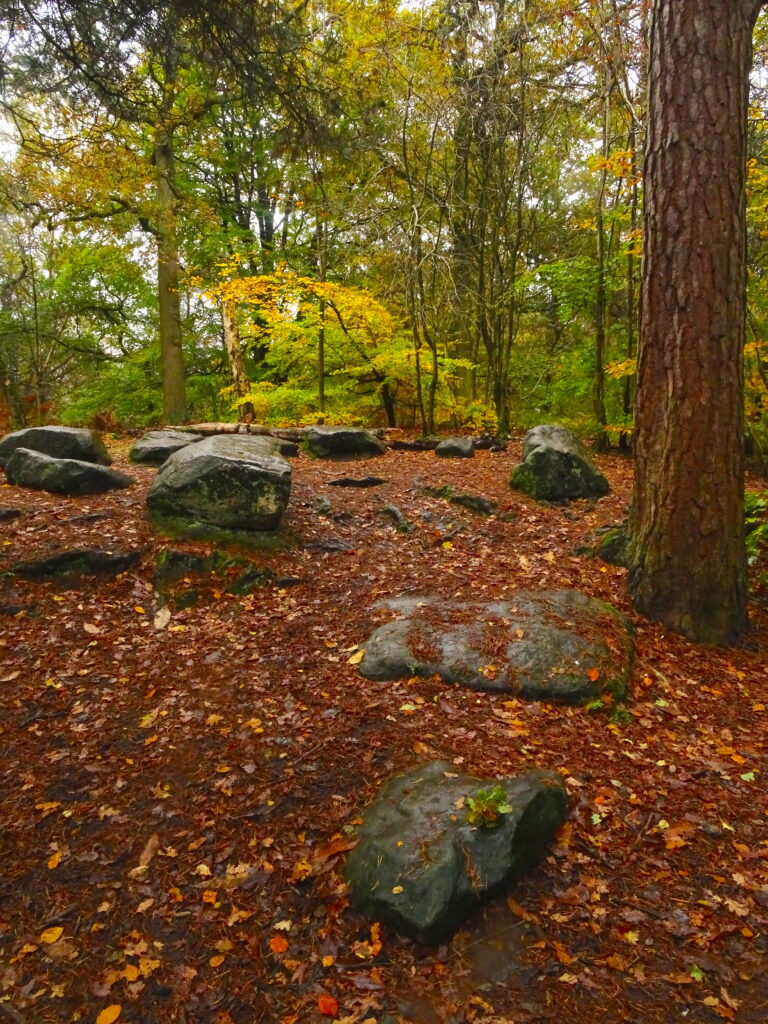 Stone Circle In The Woods