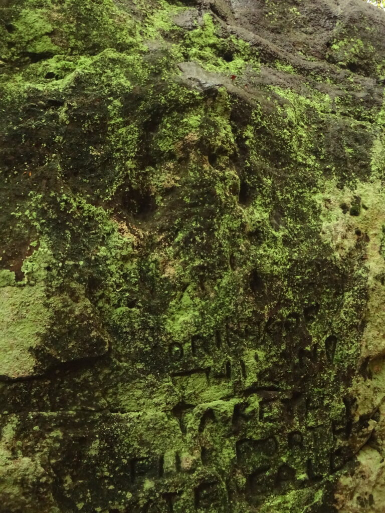 Wizards Face Carved Into Rock
